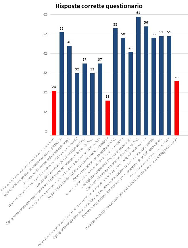 Figura 1 - Dettaglio del questionario somministrato agli infermieri